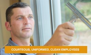 window-cleaning-employees